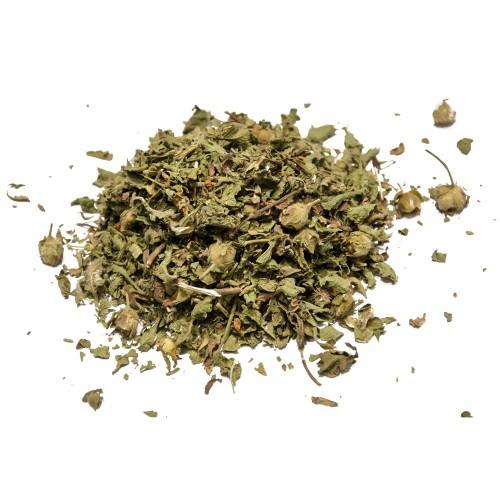 Κίστος ή Κουνούκλα ή Λαδανιά Φυτό - 100γρ